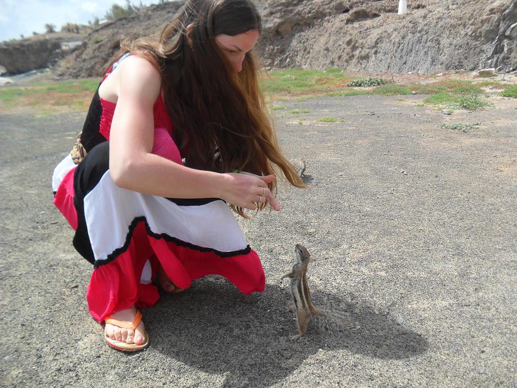 Канарские острова в марте. Fuerteventura_04